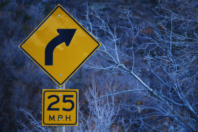 "A yellow road sign with a curving black arrow and the marking ""25 M.P.H."" standing near bare trees in the wintertime."