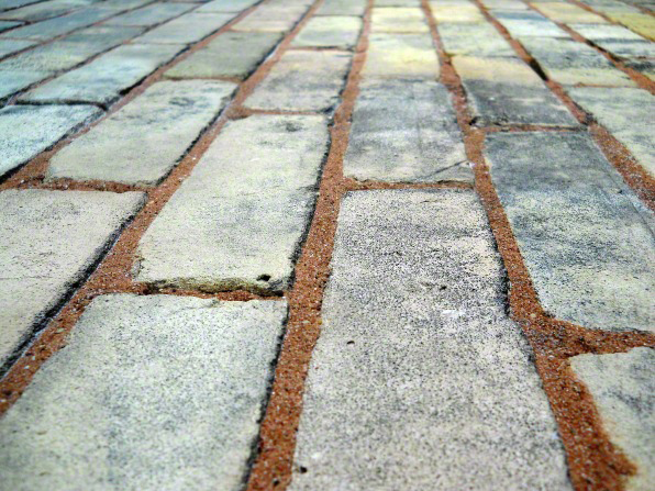 Gray rectangular bricks laid into mud to create a road or path, with the mud showing between the bricks.