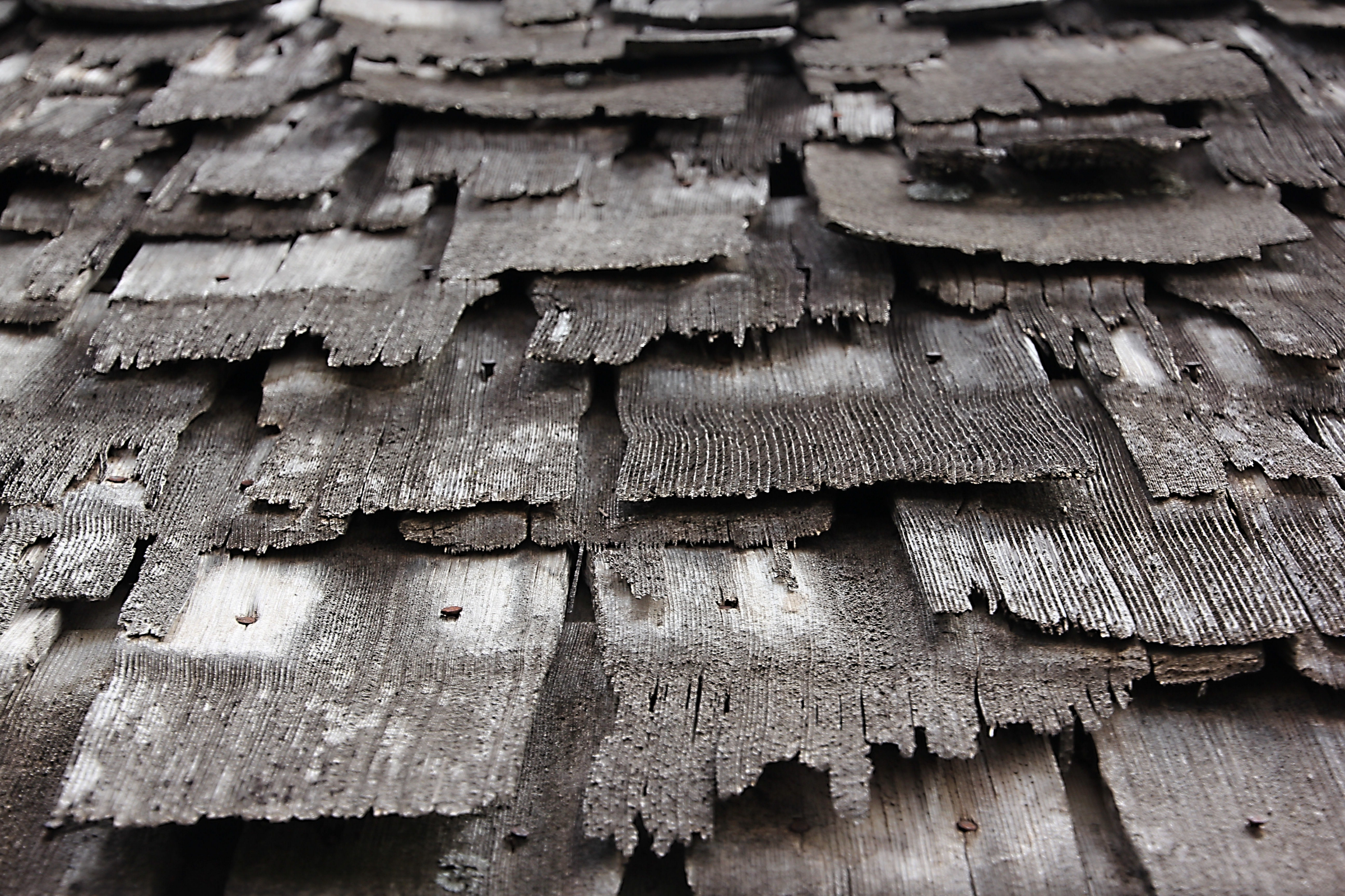 Image result for old wood roof shingle