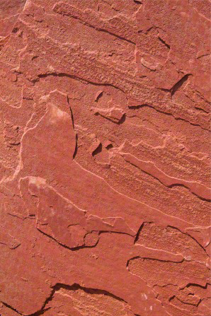 A detail of a piece of rust-red sandstone with portions of the rock naturally raised in a textured pattern.
