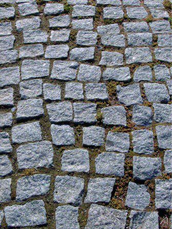 Rows of small, square gray stones arranged in a somewhat random pattern to form a straight path running up and down the image.
