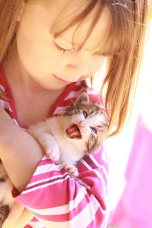 An image of a little girl holding a mewing kitten.