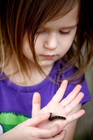 A photo of a young girl holding a fuzzy caterpillar in her hand.