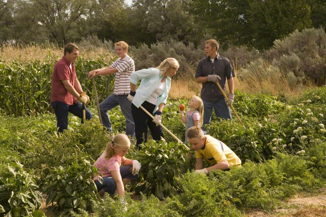 A mother and father work in a large green garden with their five children, who are all helping.