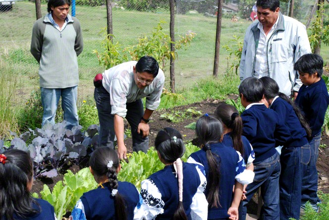 A row of children in blue uniforms learn about plants in a garden from several adult teachers who are with them.