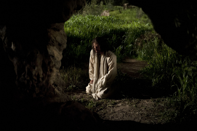 Matthew 26:36–57, Jesus kneels and suffers in the Garden of Gethsemane