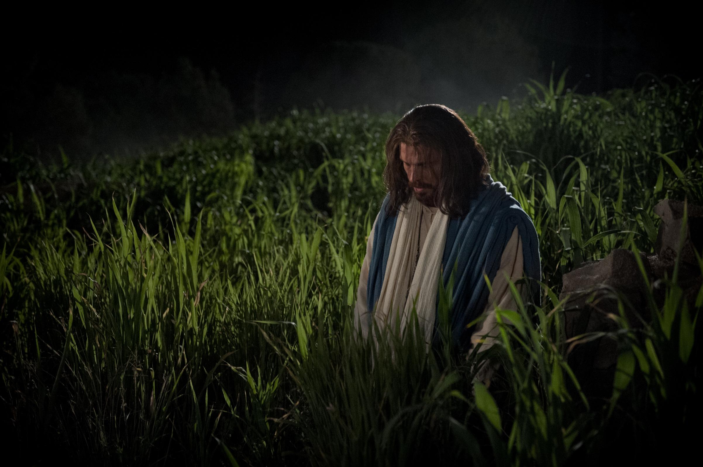 Best Wallpaper Mobile Jesus - christ-in-gethsemane-matthew-reier-960133-wallpaper  Snapshot_136882.jpg?download\u003dtrue