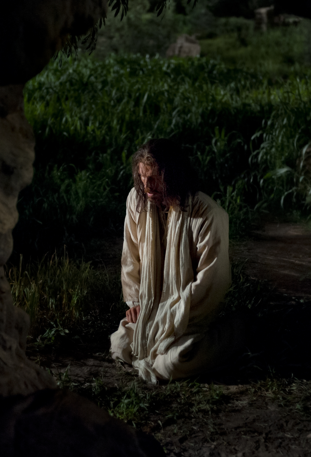 Christ Kneels In The Grove