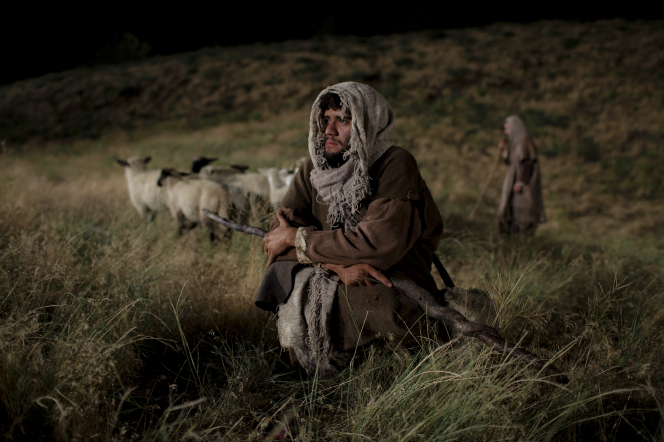 Luke 2:8–18, A shepherd in a field