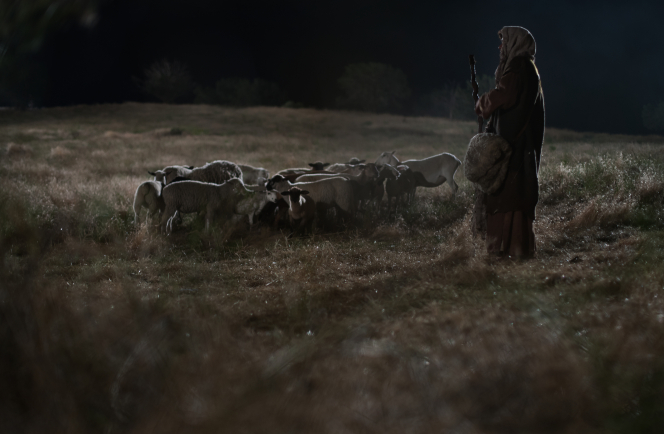 Luke 2:8–15, A shepherd standing in a field