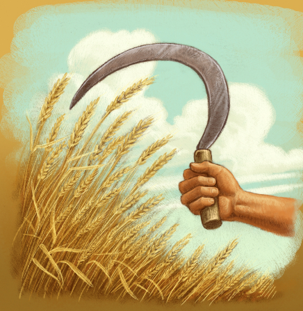 An illustration of a hand holding a sickle, prepared to harvest wheat.