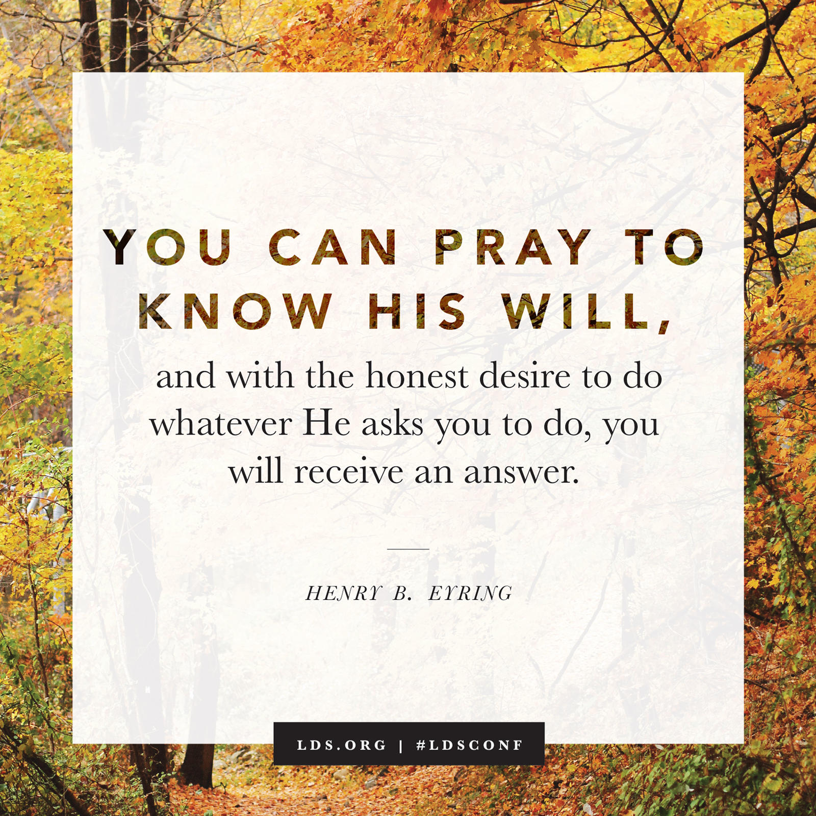 Pray to Know His Will