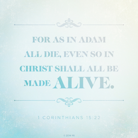 A gradient white and blue background with the words found in 1 Corinthians 15:22 printed over the top.
