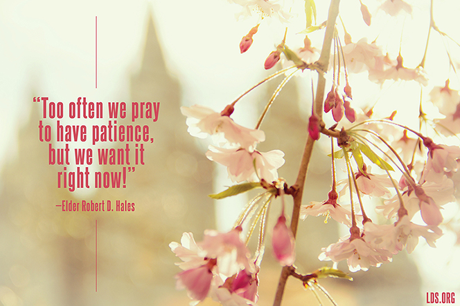 "An image of pink blossoms coupled with a quote by Elder Robert D. Hales: ""Too often we pray to have patience, but we want it right now!"""