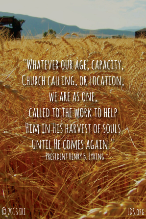 "An image of a field of wheat paired with a quote by President Henry B. Eyring: ""Whatever our … capacity, … we are as one, called to the work."""