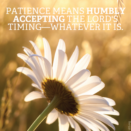 "A photograph of a white daisy paired with the words ""Patience means humbly accepting the Lord's timing."""