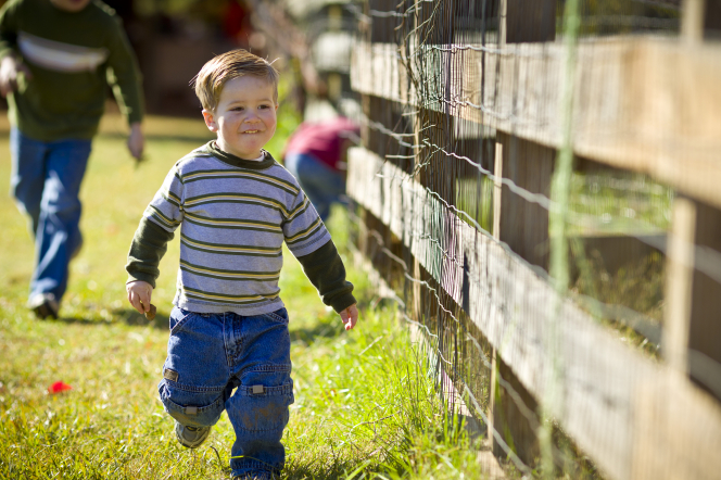 A little boy in a striped shirt smiles as he walks along a wooden fence.