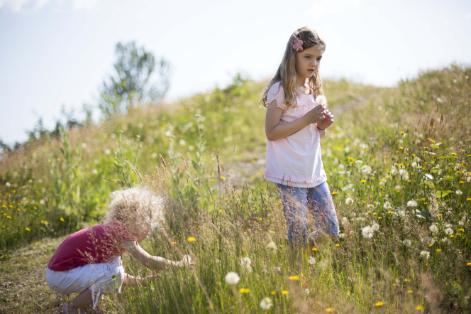One girl stands in a field holding flowers while another girl on the left bends down to pick flowers.