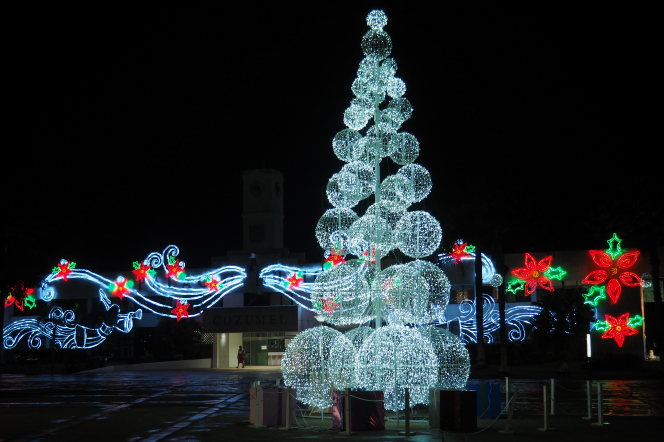 Lit Christmas tree in Cozumel, Mexico, at night.