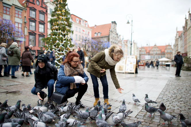 A mother, son, and daughter feed birds at Christmastime.