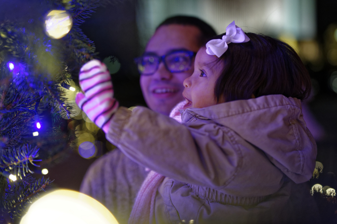 A father with glasses holds his daughter, who is smiling and reaching for the Christmas tree.