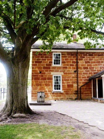 A side view of the red-brick Carthage Jail, with a large tree to the left.