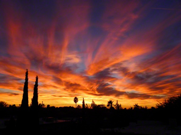 A sunset in Arizona turns clouds orange, yellow, and purple against a darkening blue sky with silhouettes of palm trees below.