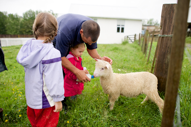 A photo of a father and his young daughters in New Zealand feeding a sheep with a bottle.
