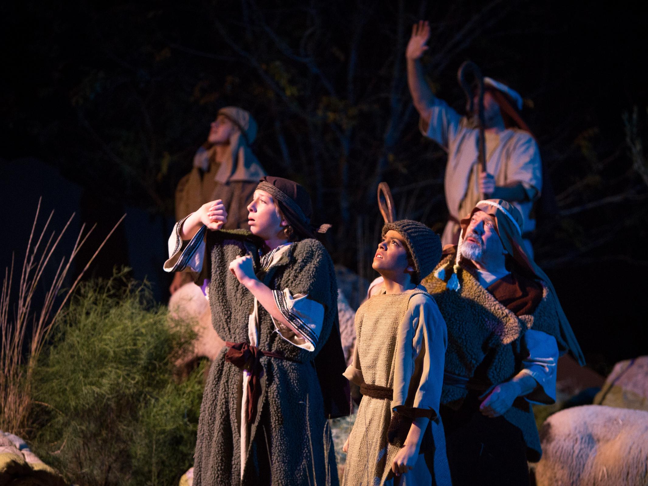 Christmas Shepherds.Shepherds In Arizona Christmas Pageant