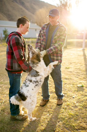 A father and son play with their dog in the yard.