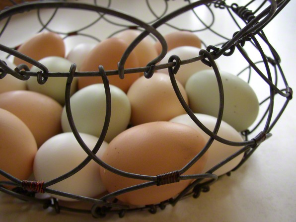 White and tan eggs in a wire basket.