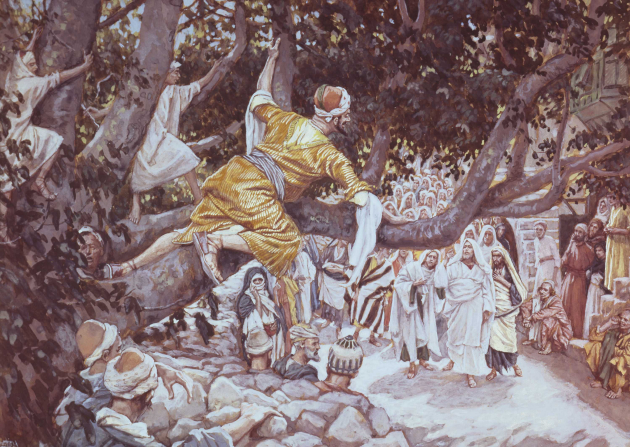 A painting by James Tissot showing Zacchaeus in a yellow robe lying in the branches of a large tree and looking down at Christ and His followers.