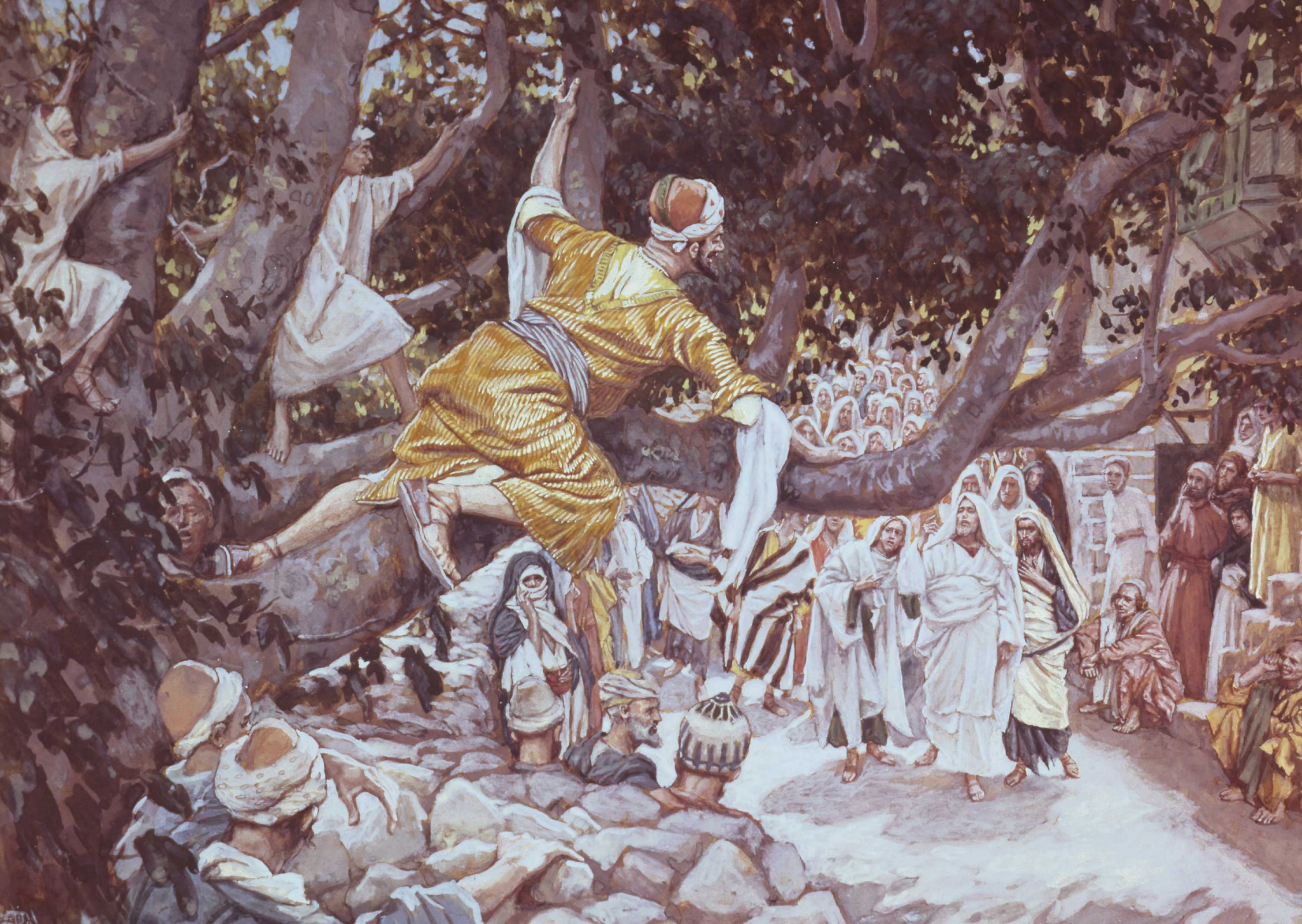 Zacchaeus in the Sycamore Tree
