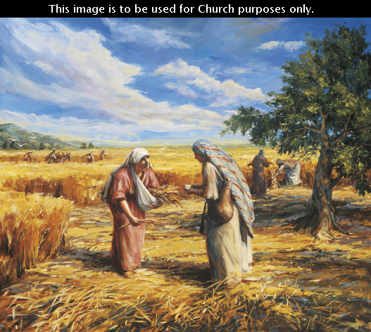 A painting by Judith Mehr showing Ruth and Naomi standing in a field, picking bits of wheat off the ground and storing them in pouches.