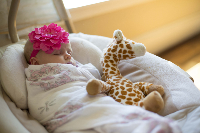 A baby girl wrapped in a white and pink blanket, sleeping next to a stuffed giraffe.