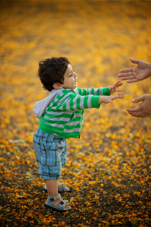 A toddler boy walks over fallen leaves toward a parent's outstretched hands.