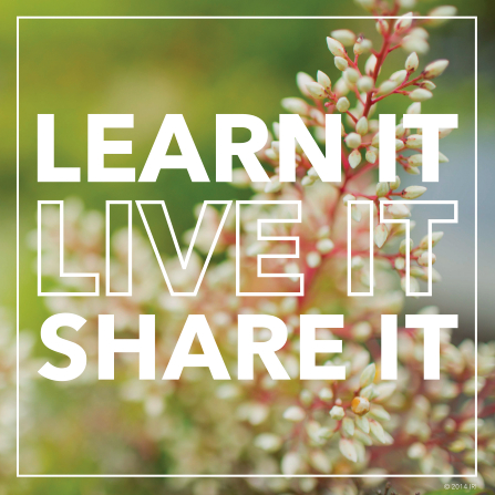 "A photograph of spring blossoms combined with the words ""Learn it, live it, share it."""