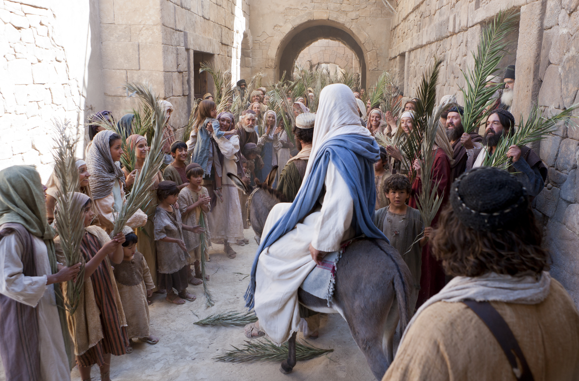 Triumphal Entry The triumphal entry of jesus