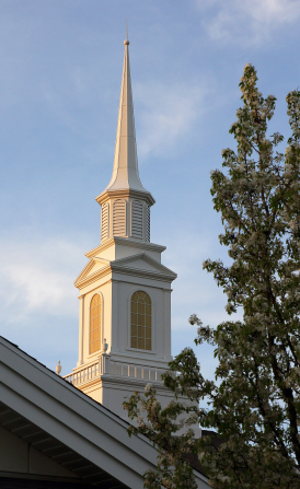 A close-up view of a white steeple next to a tree with a clear, blue sky.