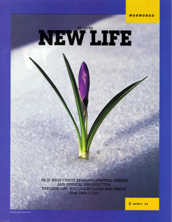 """A conceptual photograph of a purple flower with green leaves growing through white snow, paired with the words """"He Gives New Life."""""""