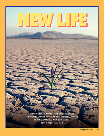 "A conceptual photograph of a small purple flower blooming in the middle of a dry desert, paired with the words ""New Life."""