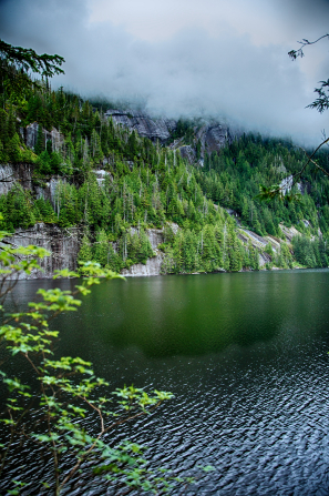 Fog lies low over tree-covered mountains near a lake in Alaska.
