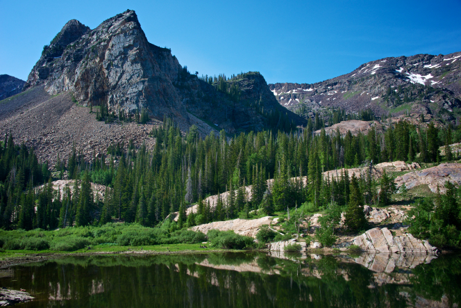A landscape image of Little Cottonwood Canyon and Lake Blanche in Utah, with mountains and tall pine trees.