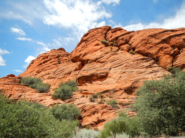 Red rock mountains bordered with green brush in Snow Canyon State Park in Utah.