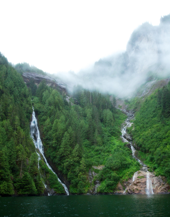 Fjords in Alaska with fog and waterfalls lined with green trees.