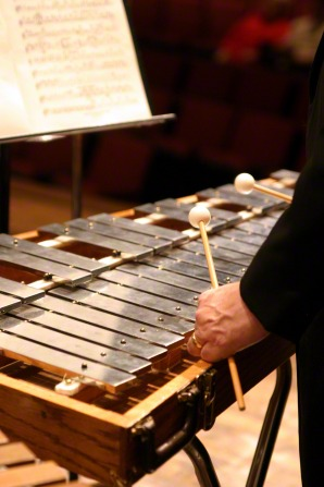 A man holding mallets while playing a glockenspiel and looking at sheet music on a metal music stand.