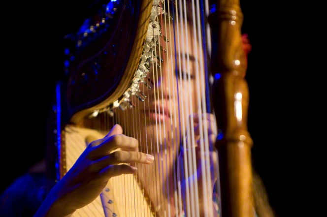 A close-up image of a young woman playing the harp during a performance.