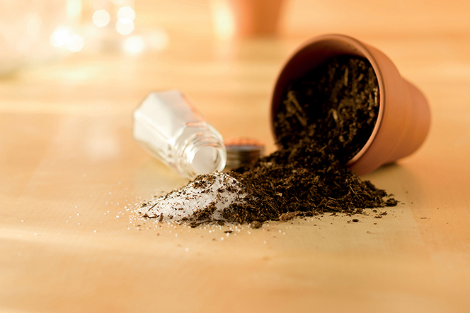 A conceptual photograph showing a shaker of salt on its side, spilling into a pile of dirt.