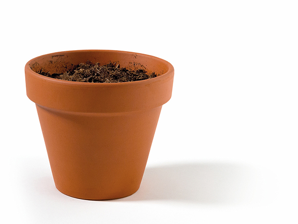 A small terra-cotta pot filled with dark dirt, set against a plain white background.