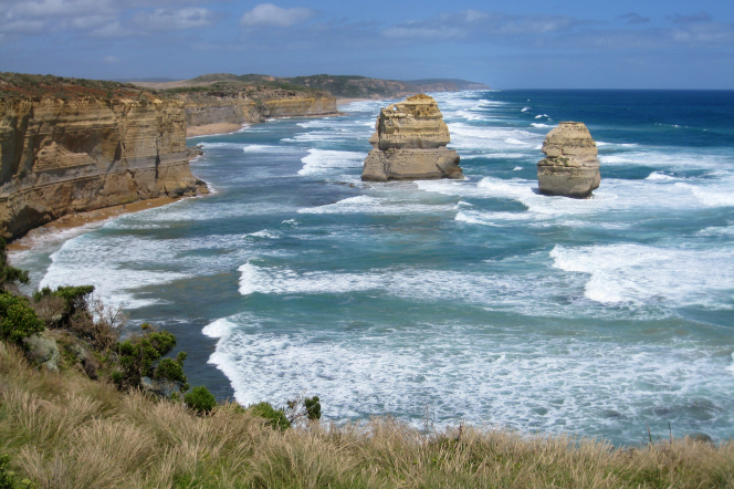 The coastline of rocks and brush in Melbourne, Australia.